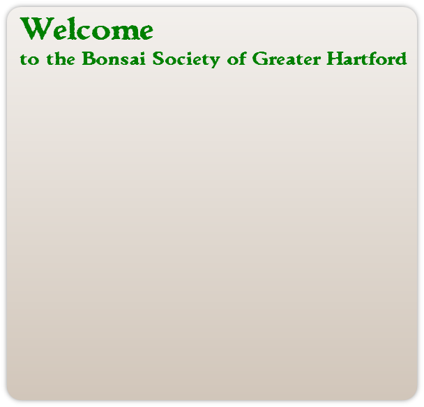 Welcome to the Bonsai Society of Greater Hartford